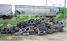 Annual Tire Collection